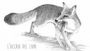 occhio-del-lupo